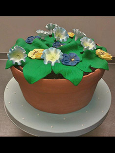 Flower Pot Cake - Shaped Cakes - 39