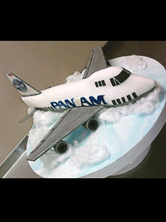 Airplane Cake - Shaped Cakes - 60